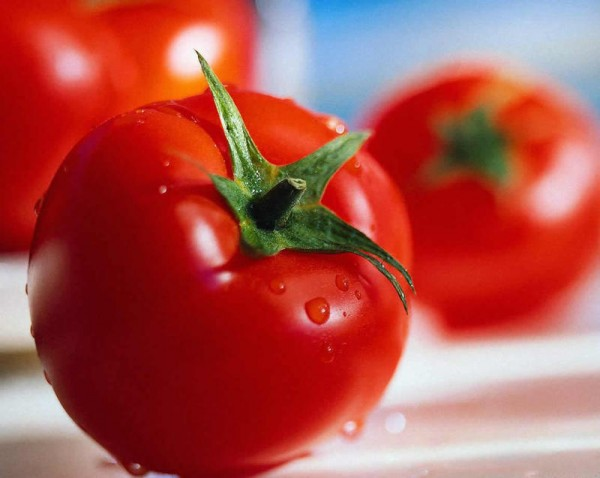 el-tomato-is-one-fruit-vegetable-one-one-verdura_ampliacion
