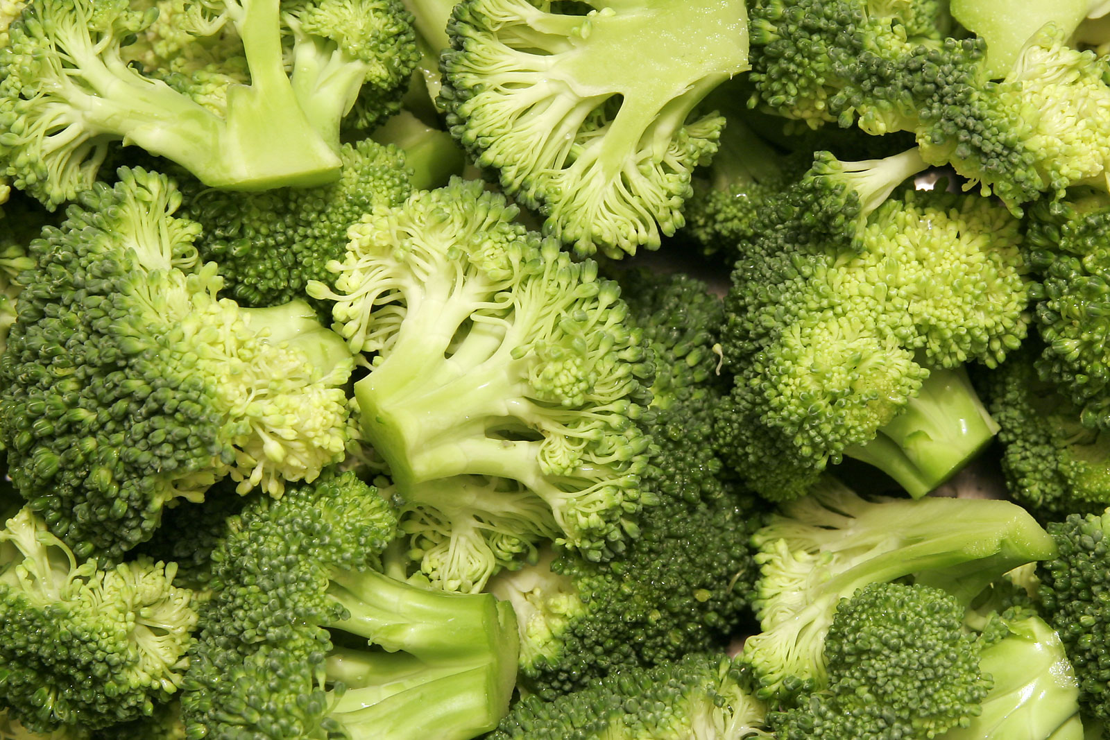 Broccoli: Benefits of this Super Vegetable